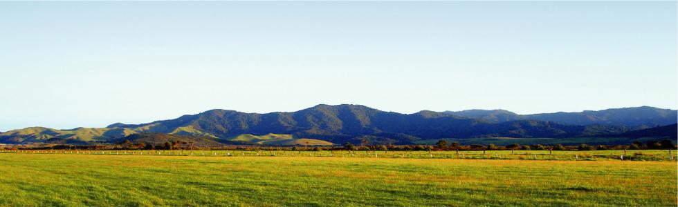 動植物たちにとっての楽園「ニュージーランド」